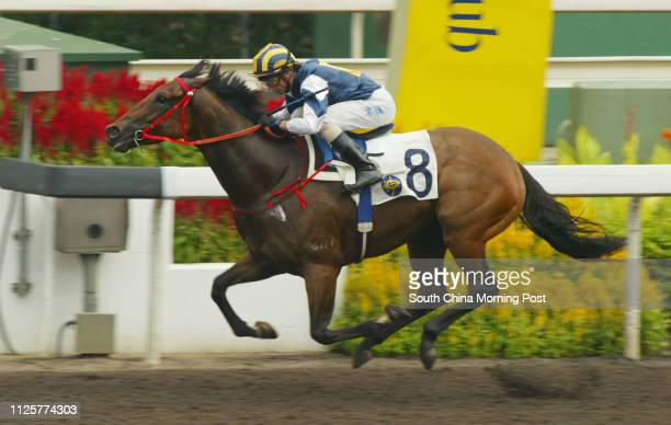 Race 4, DEMINER ridden by Douglas Whyte won class 4 over 1200m at Sha Tin Racecourse. 23 September 2007