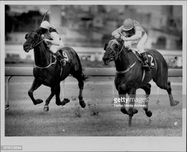 Winner Silk AliSilky Smooth Aaron Kennedy guides nuggety threeyearold Silk Ali to victory in the Stampede Superfecta May 9 1992