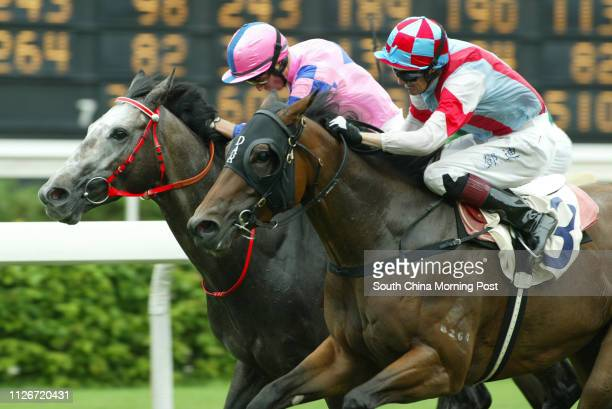 Race 5 No 3 Dongguan Excels ridden by Dwayne Dunn wins the 1600m race at Sha Tin Racecourse 18 May 2003