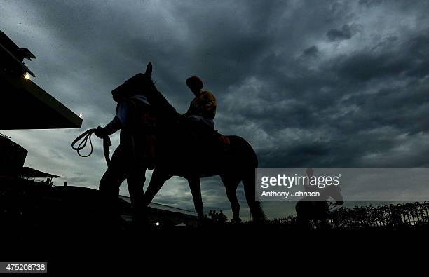 Race 7 winner Vergara with Taylor Marshall on board head out for the start of race 7 during Sydney Racing at Rosehill Gardens on May 30 2015 in...