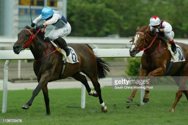Race 8 No 6 Darwin ridden by Shane Dye beats Multiwinning to win the 1800m race at Sha Tin Racecourse 18 May 2003
