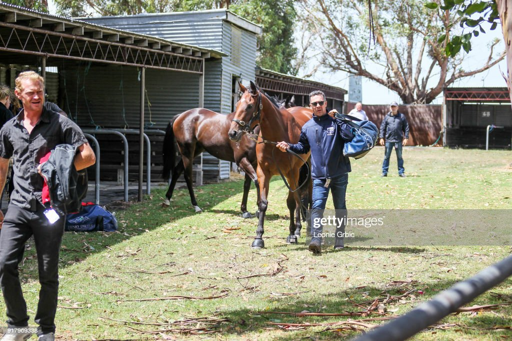 Race abandoned prior to Aherns Fruit Market - Foster Vic Maiden Plate at Stony Creek Racecourse on February 14, 2018 in Stony Creek, Australia.