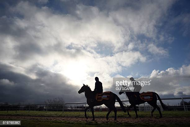 Race horses are exercised before the gates open to the public on the second day of the Grand National Festival horse race meeting at Aintree...