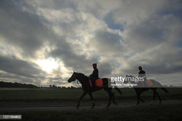 Race horses are seen exercising on Epsom Downs on May 28, 2020 in Epsom, England. The British government continues to ease the coronavirus lockdown...