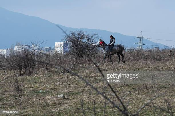 A race participant as Bulgarian Roma celebrate Horse Easter in the Fakulteta neighborhood of Sofia on February 28 2015 Every year on St Todor's day...