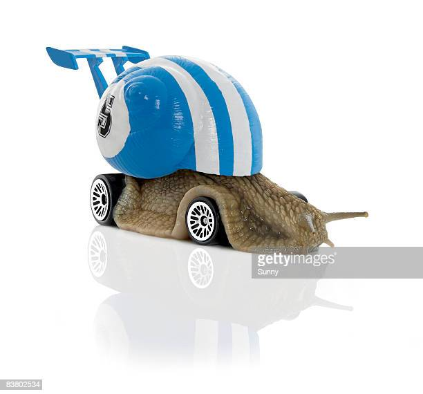 Racecarsnail