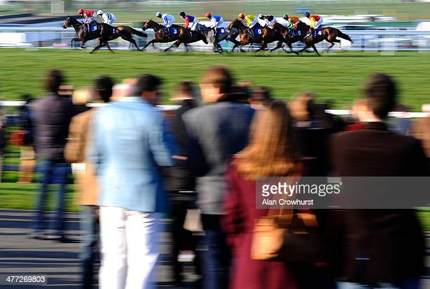 Racegoers watch as the runners pass in The EBF Stallions/TBA Mares' Standard Open National Hunt Flat Race at Sandown racecourse on March 08 2014 in...