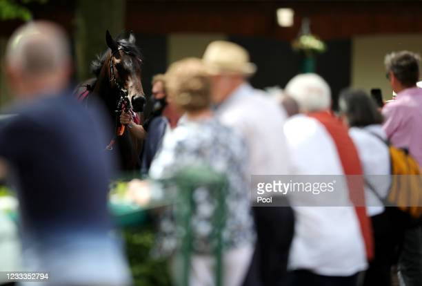 Racegoers watch horses in the parade ring before the Steve Taplin Memorial EBF Fillies' Novice Stakes at Haydock Park Racecourse on June 9, 2021 in...