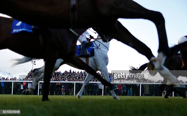 Racegoers watch the action as the runners pass at Punchestown racecourse on April 26 2016 in Naas Ireland
