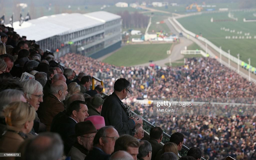 Racegoers watch the Cheltenham Gold Cup from the stands on the final day of the Cheltenham Festival on March 14, 2014 in Cheltenham, England. Thousands of racing enthusiasts have been at the four-day festival, which ends today with the festival's Gold Cup and is seen as many as the highlight of the jump racing calendar.