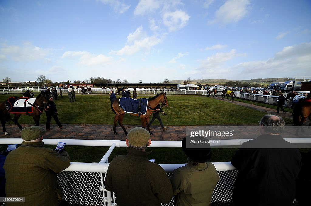 Racegoers watch the runners parade for the first race at Ludlow racecourse on January 30, 2013 in Ludlow, England.