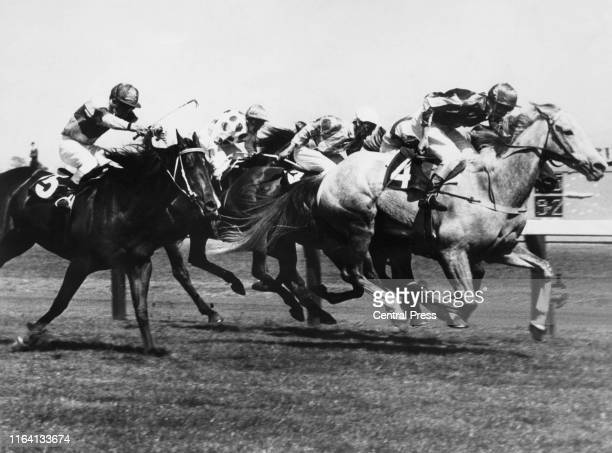Racehorse, Baghdad Note , ridden by jockey Midge Didham, leading the field before winning the Melbourne Cup at Flemington race course in Melbourne,...