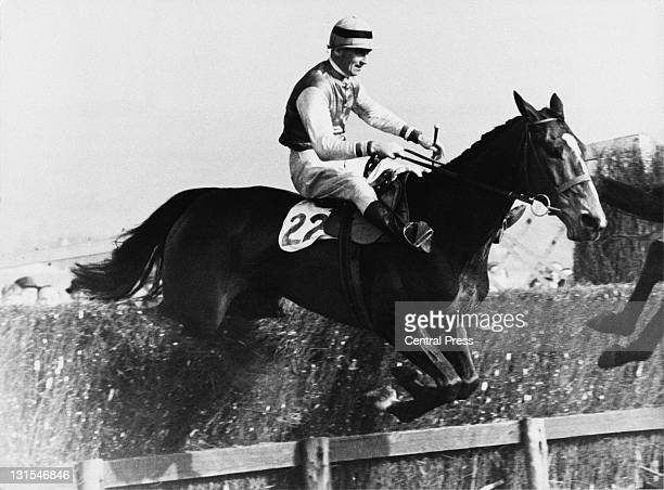 Racehorse Cottage Rake and jockey Aubrey Brabazon take the final fence to win the Cheltenham Gold Cup April 1948
