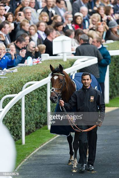 Racehorse Frankel is led around the winner's enclosure after winning the Champion Stakes British Champions Middle Distance race at Ascot England on...