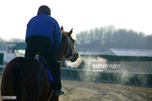 Racehorse on Track -color