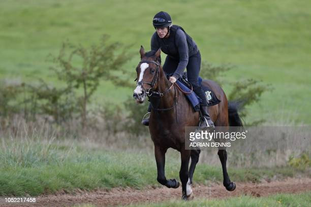 Racehorse trainer Candida Baker George Baker's wife exercises a horse on the gallops near to their Robins Farm stables in Chiddingfold south of...