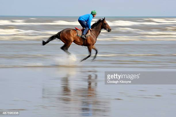 A racehorse warms up in the sea at the Laytown races during the one day annual meet on September 10 2015 in Meath Ireland The event first ran in 1868...