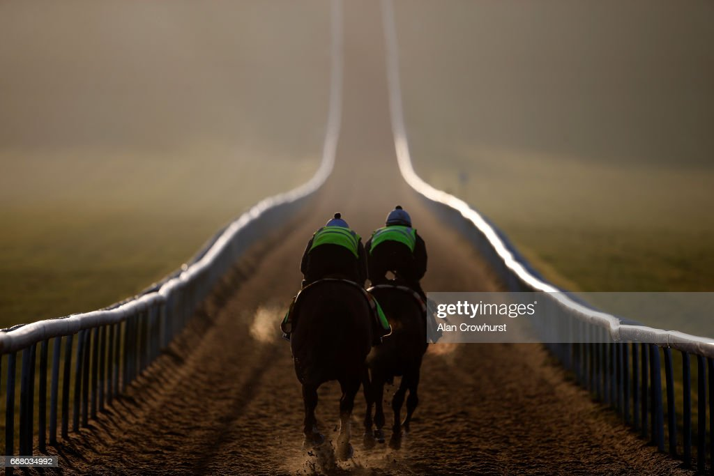Racehorses climb the Warren Hill gallop on April 13, 2017 in Newmarket, England.