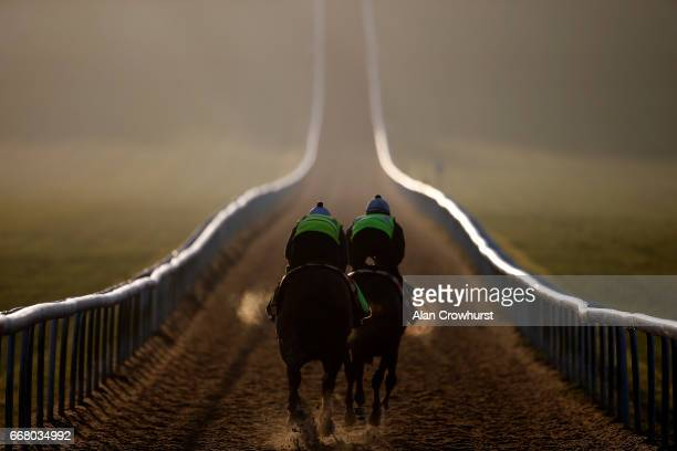 Racehorses climb the Warren Hill gallop on April 13 2017 in Newmarket England