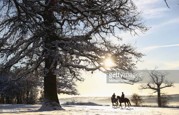 Racehorses head out towards the polytrack gallops in heavy snow at the yard of national hunt trainer Nigel TwistonDavies on December 12 2017 in...