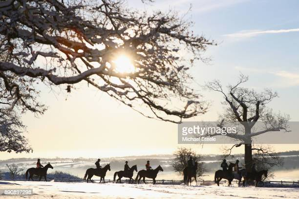 Racehorses head towards the polytrack gallop in heavy snow conditions during the morning gallops at the yard of national hunt trainer Nigel...