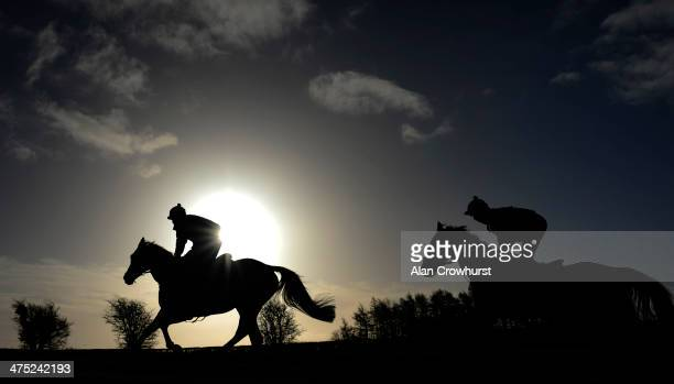 Racehorses make their way up the gallop at Jonjo O'Neill's Jackdaws Castle stables on February 27 2014 in Cheltenham England
