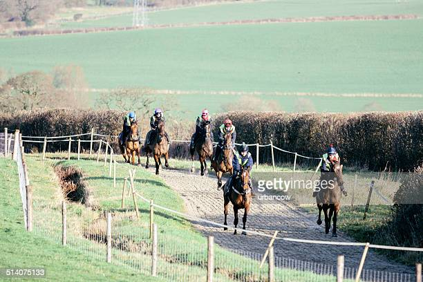 Racehorses, morning exercise