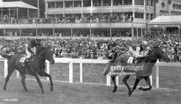 Racehorses Right Boy and Alastair during the 230 at Ascot June 1958