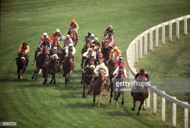 Racehorses rounding Tattenham Corner during the Epsom Derby