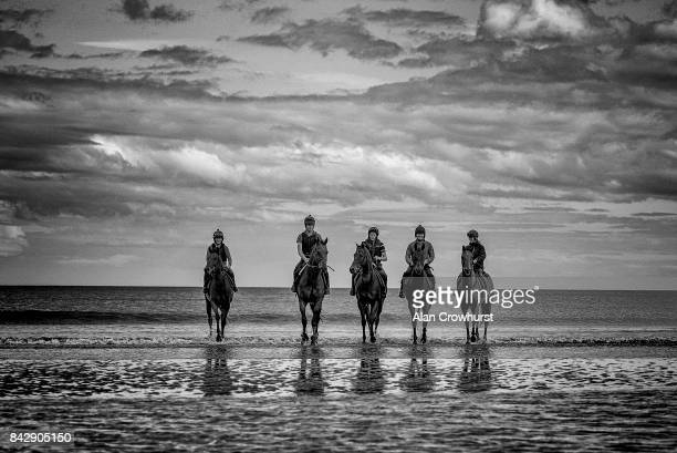 Racehorses take a stroll in the Irish Sea before racing at Laytown racecourse on September 5, 2017 in Laytown, Ireland. Laytown racecourse is a horse...