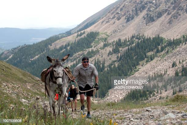 A racer makes his way up the trail during the 70th Annual Burro Days Race in Fairplay Colorado on July 29 2018 Racers equip their burro with a pack...