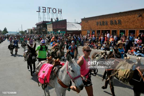 Racers and their burros run down Front Street at the start of the Pack Burro Race during the 70th Annual Burro Days in Fairplay Colorado on July 29...