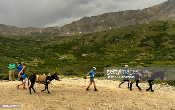Racers make their way down from the summit of Mosquito Pass as they take part in the 70th annual World Championship Pack Burro Race on July 29 in...
