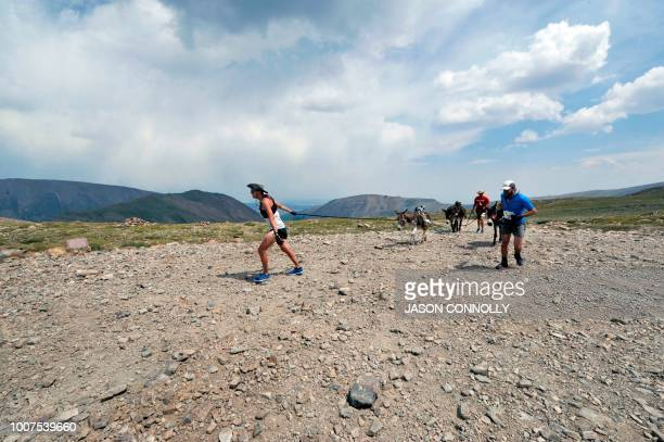 Racers make their way up to Mosquito Pass during the 70th Annual Burro Days Race in Fairplay Colorado on July 29 2018 Racers equip their burro with a...