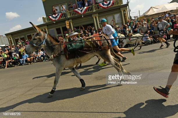 Racers run down Front street at they start the 70th annual World Championship Pack Burro Race on July 29 in Fairplay Colorado Each runner must lead...