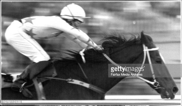Races Rosehill Race 8Winner No 4 Agro WarriorR to SWinner M Fitzgerald July 16 1990