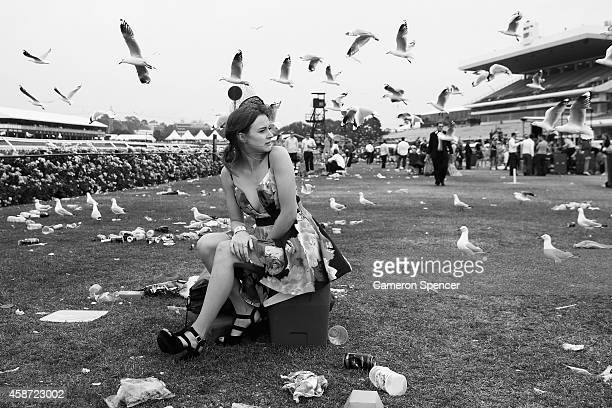 A racgoes sits on an esky on the public lawn following the final race on Stakes Day at Flemington Racecourse on November 8 2014 in Melbourne Australia