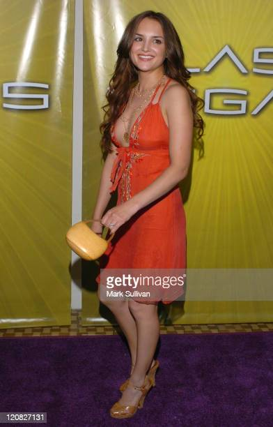 Rachael Leigh Cook during NBC Cocktail Party for Las Vegas at TCA Arrivals at Beverly Hilton Hotel in Beverly Hills California United States