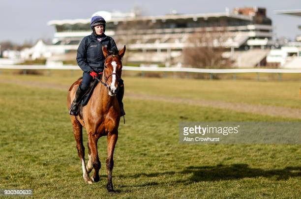 Rachael Robbins riding Faugheen for trainer Willie Mullins on the gallops at Cheltenham racecourse on March 11 2018 in Cheltenham England