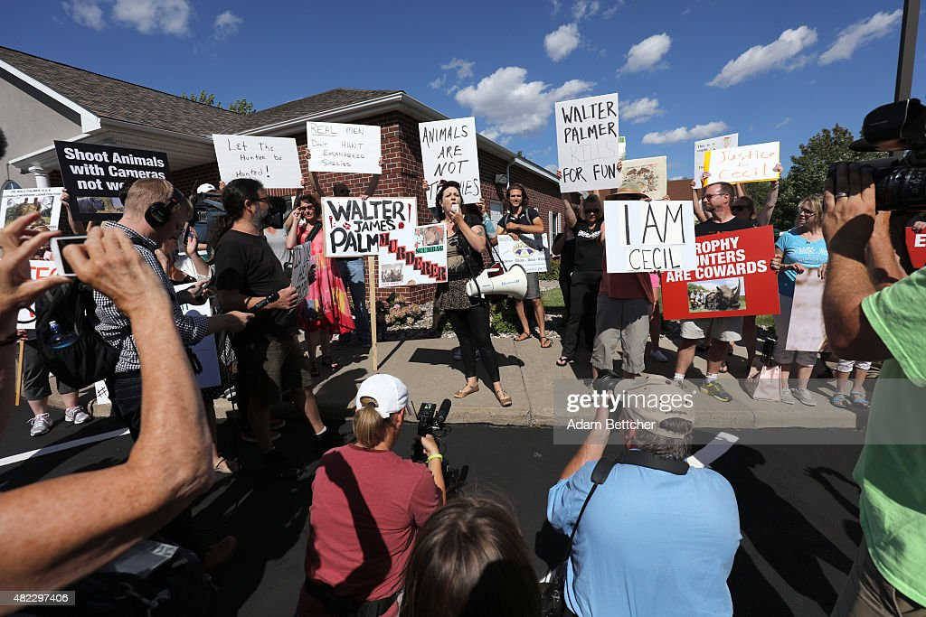 Rachel Augusta leads the protest of the killing of Cecil the lion, in the parking lot of hunter Dr. Walter Palmer's River Bluff Dental Clinic on July 29, 2015 in Bloomington, Minnesota. According to reports, the 13-year-old lion was lured out of a national park in Zimbabwe and killed by Dr. Palmer, who had paid at least $50,000 for the hunt.