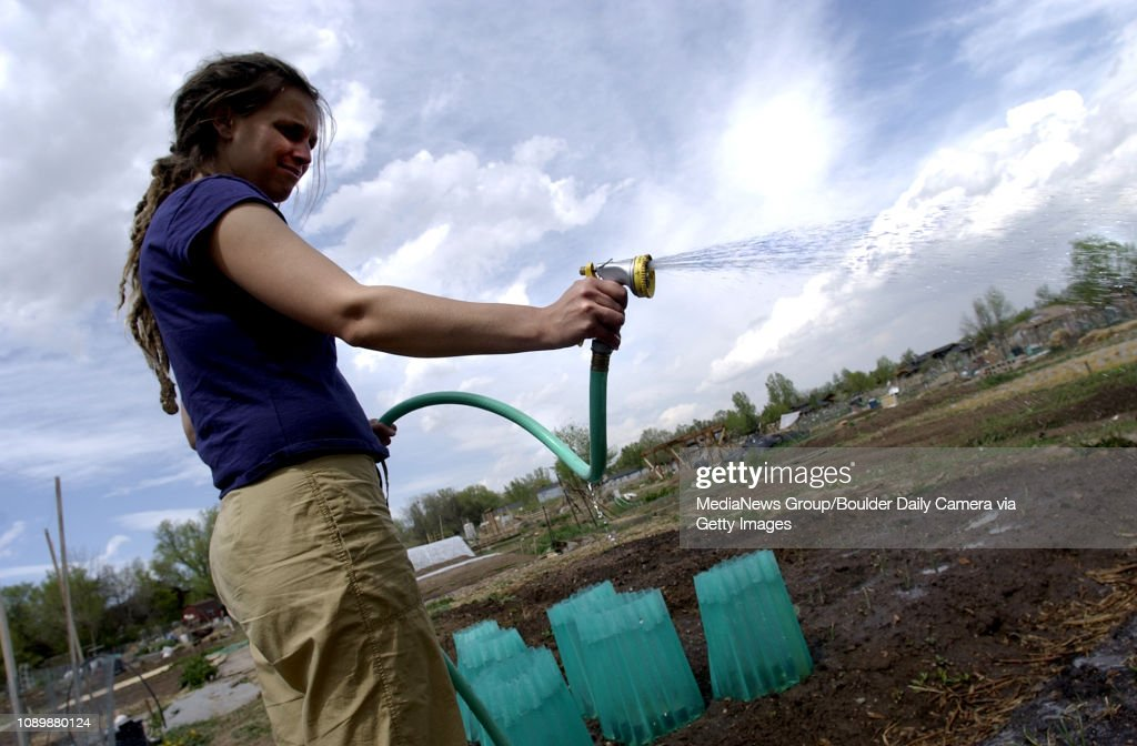 Rachel Gillette hand-waters her plot at the Community