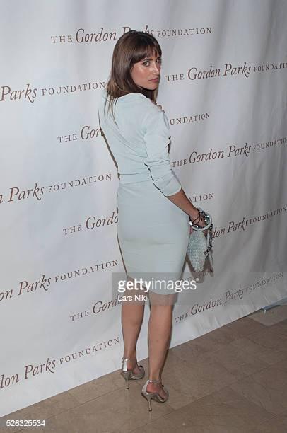 Rachel Heller attends the Gordon Parks Foundation Awards Dinner at the Plaza Hotel in New York City �� LAN