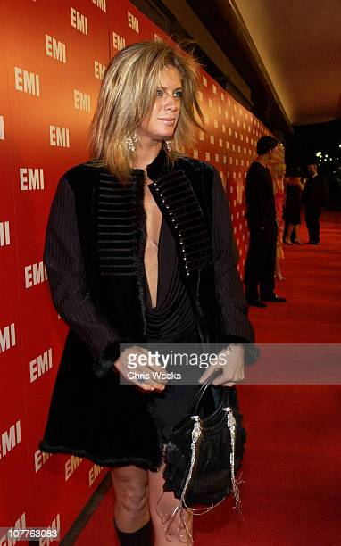 Rachel Hunter during EMI 2004 GRAMMY Party at Los Angeles County Museum of Art in Los Angeles California United States