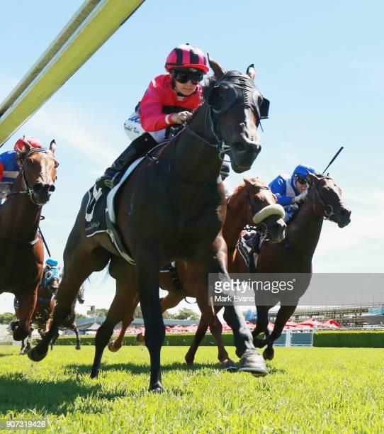 Rachel King on Memes wins race 5 during Sydney Racing at Royal Randwick Racecourse on January 20 2018 in Sydney Australia