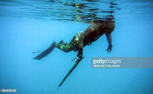 Rachid Zock a 38yearold Lebanese freediving and spearfishing instructor holds a speargun as he starts to dive off of the coast of Qalamun in northern...
