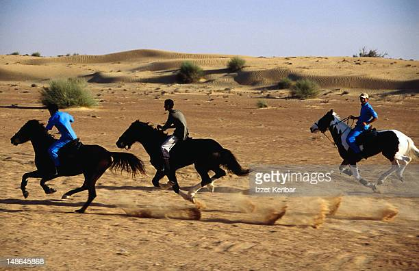 Racing horses running in desert near El Maha Resort.