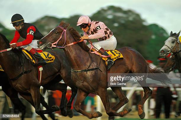 racing in the cockspur gold cup - jockey silks stock pictures, royalty-free photos & images