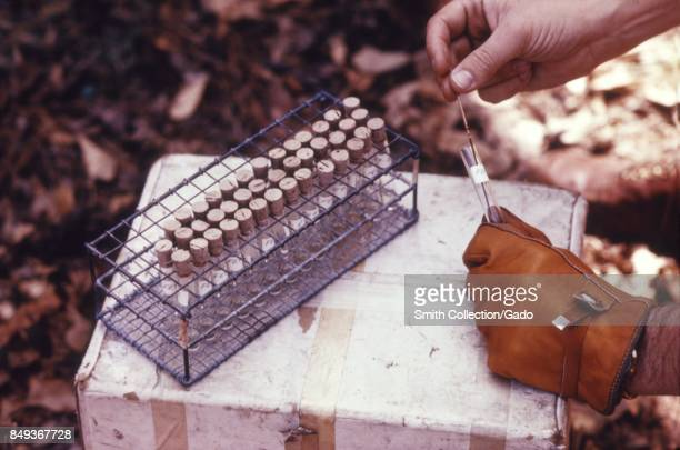Rack of multiple blood samples on top of a cooler during an arbovirus field study 1974 Image courtesy CDC