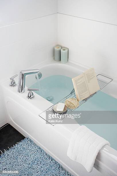 Rack over bathtub holding book, soap, and loofah