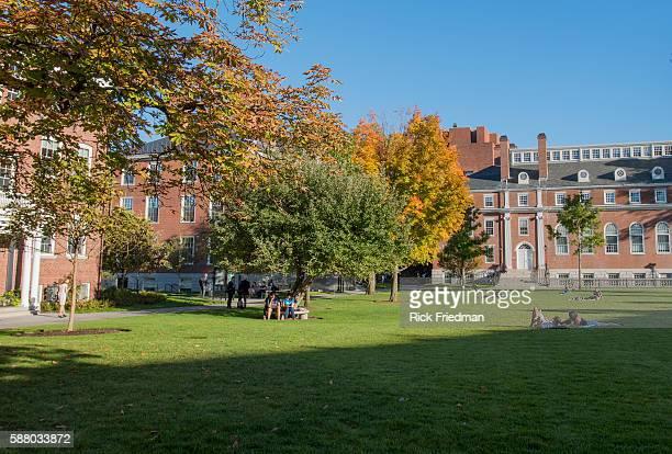 Radcliffe Yard at Harvard University in Cambridge, MA on October12, 2015.